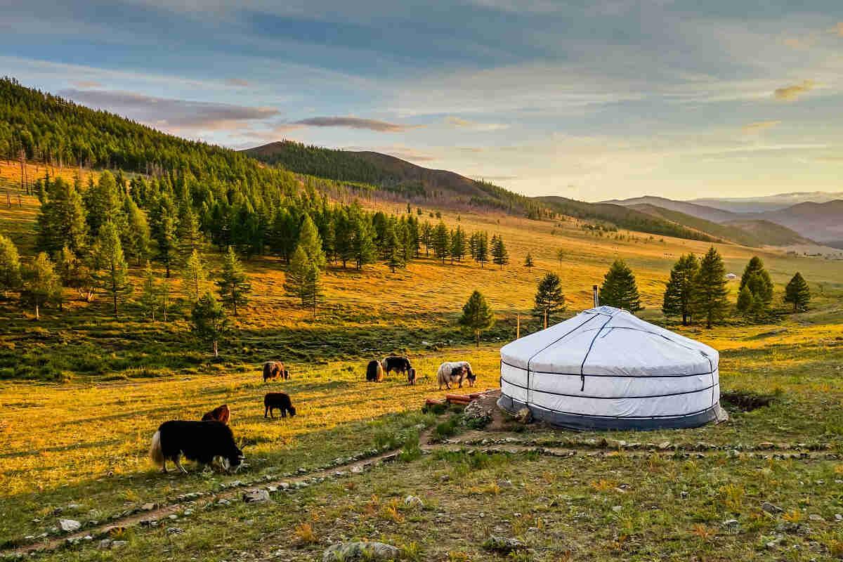 Visa Mongolie sur passeport